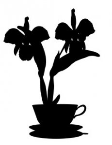 House Plant 4 dxf file