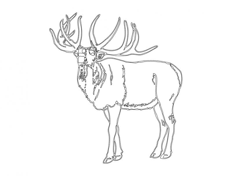 Wooden Deer Head Template