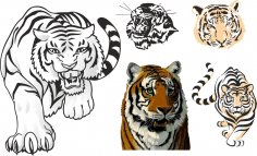 Tiger Stickers For Cars CDR File