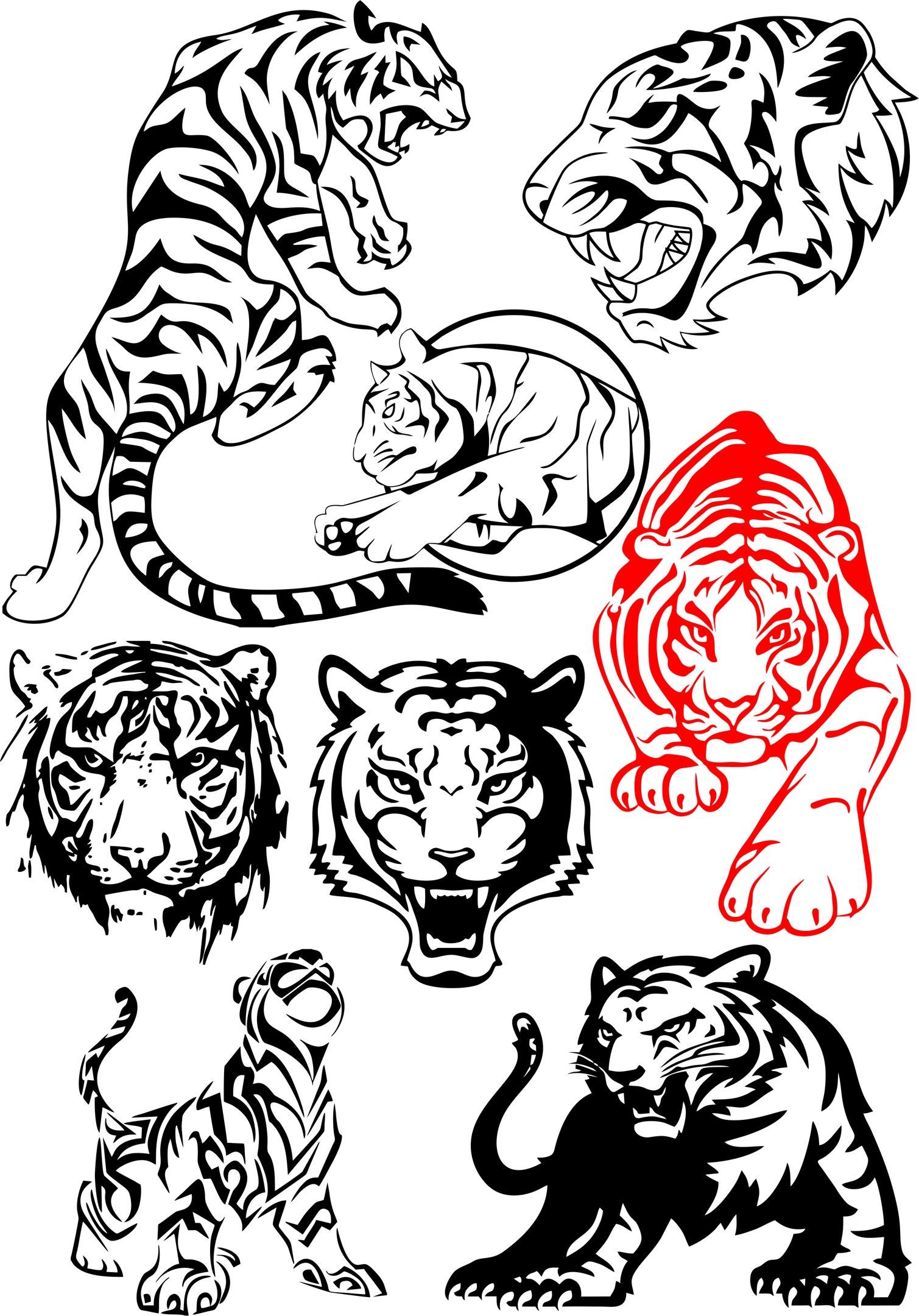big tiger vectors pack free vector download