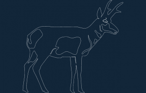 Pronghorn dxf