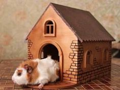Rabbit House dxf file