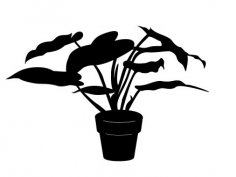 House Plant Silhouette dxf file