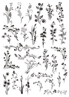Decorative Elements Floral Ornaments CDR File