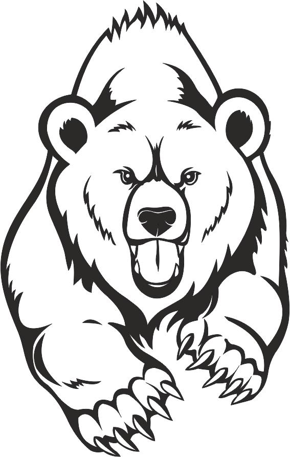 медведь тату картинки рисунки косоглазии происходит