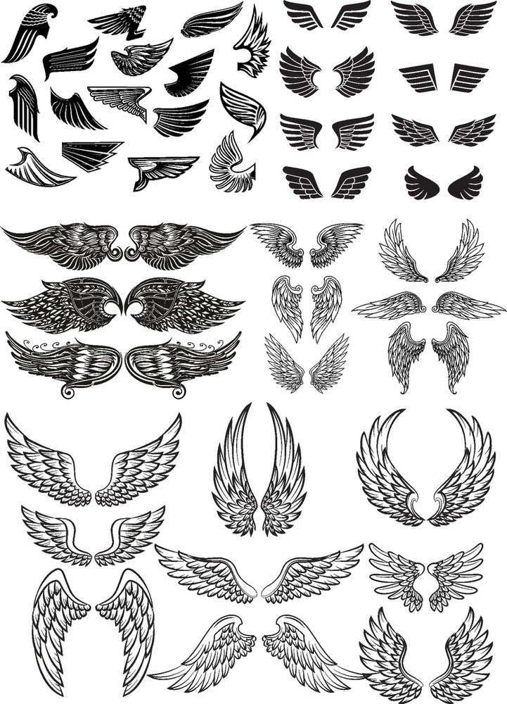 Wings Vector Set Free Vector cdr Download - 3axis.co