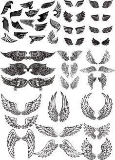 Wings Vector Set CDR File