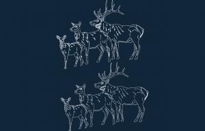 Animals 2.41 dxf file