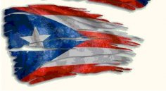 Puerto Rican Flag dxf File