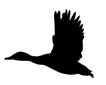 Mallard Duck Flying Silhouette Dxf File Free Download