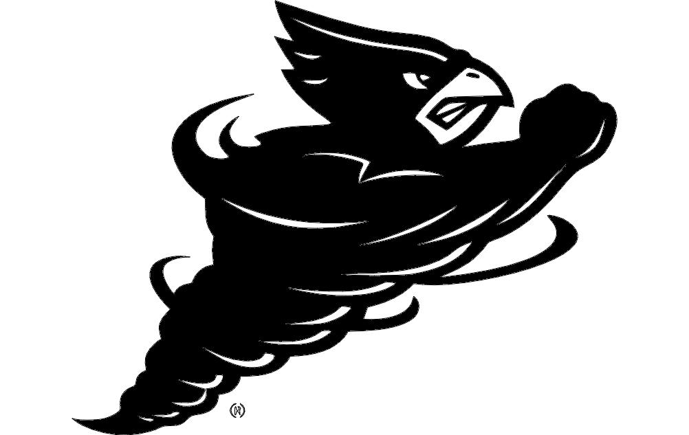 3d punisher flag logo