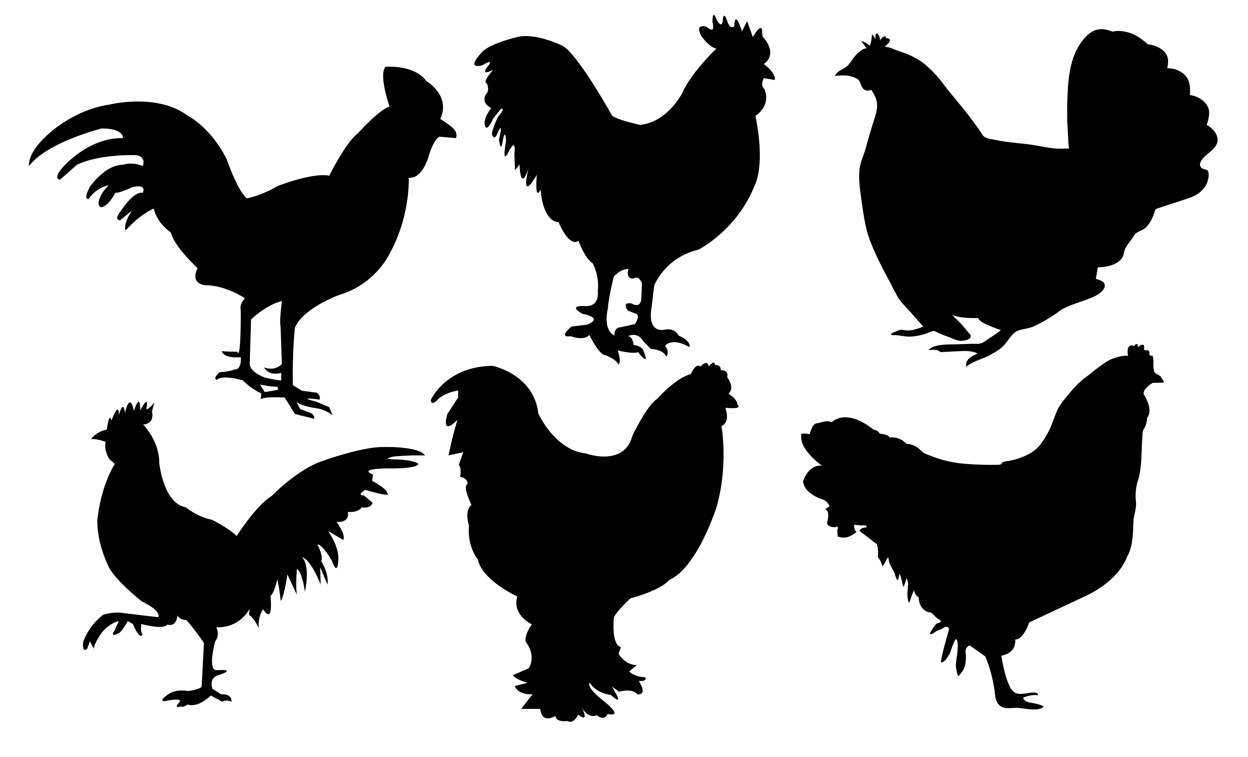 Chickens Dxf File Free Download 3axis Co