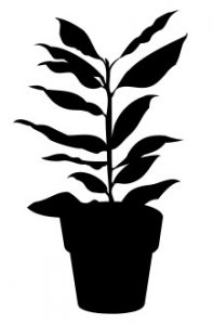 House Plant 6 dxf file